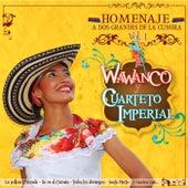Homenaje a Dos Grandes de la Cumbia: Wawancó y Cuarteto Imperial, Vol. 1 de Various Artists
