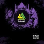 Dark Side - Single by Flanger