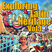 Perfect For Latin Dancing, Vol.1 de Various Artists