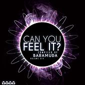 Can You Feel It?, Vol. 6 (Compiled By Baramuda) von Various Artists