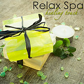 Relax Spa - Healing Touch, Calming Spa Music for Deep Relaxation and Massage von S.P.A