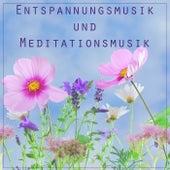 Entspannungsmusik und Meditationsmusik - Hintergrundmusik und Einschlafmusik zum Entspannen und Meditieren von Various Artists