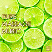 Pure Massage Music - Relaxing Background Music for Massage & Gentle Sounds of Nature, Day Spa Stress Relief by Various Artists