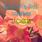 Feliz Dia Del nombre Jose von Various Artists