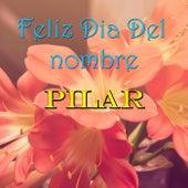 Feliz Dia Del nombre Pilar de Various Artists