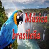 Música Brasileña (Bossa Nova & Samba) de Various Artists