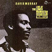 Live at the Lower Manhattan Ocean Club (Live) von David Murray