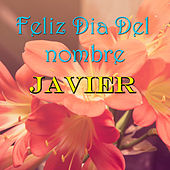 Feliz Dia Del nombre Javier by Various Artists