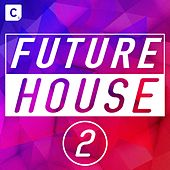Future House 2 de Various Artists
