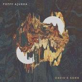 David's Song by Poppy Ajudha
