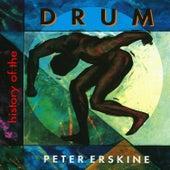 History Of The Drum de Peter Erskine