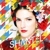 Viva Diaspora by Shantel