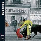 Flamenco 2 de Various Artists