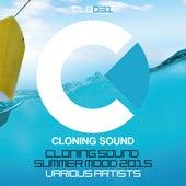Summer Mood 2015 de Various Artists
