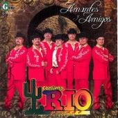 Amantes y Amigos by Conjunto Rio Grande