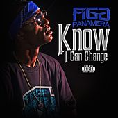 Know I Can Change - Single von Figg Panamera