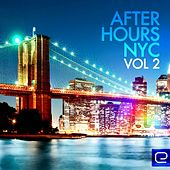 Afterhours NYC, Vol. 2 - EP by Various Artists