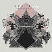 Real/ Surreal von Scalene
