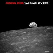 Rising 2015 by Wasabi Bytes