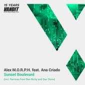Sunset Boulevard by Alex M.O.R.P.H.