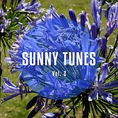 Sunny Tunes, Vol. 2 (Sundrenched Chilled & Relaxed Dance Beats) by Various Artists