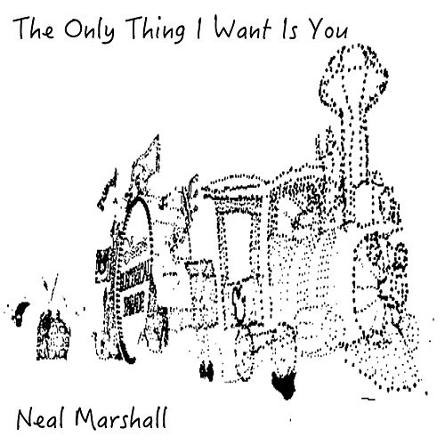 The Only Thing I Want Is You de Neal Marshall