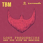 Are You with Me (Harold Van Lennep Piano Edit) von Lost Frequencies