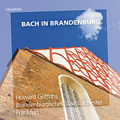 Bach in Brandenburg by Various Artists