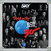Rock In Rio 30 Anos de Various Artists