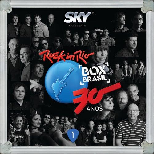 Rock In Rio 30 Anos de Various Artists