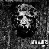 Lions by New Waters