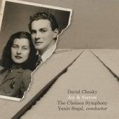 Joy And Sorrow by David Chesky