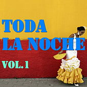 Toda La Noche, Vol.1 von Various Artists