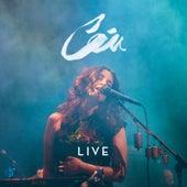 Live by Céu