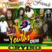 The Youths Dem Crying by Various Artists