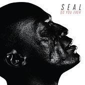 Do You Ever de Seal