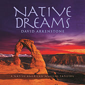 Native Dreams de David Arkenstone