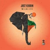 Wildlife EP by Just Kiddin