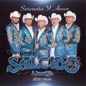 Serenata Y Amor by Salcido Norte