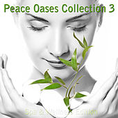Peace Oases Collection 3 - Spa & Wellness Edition by Various Artists