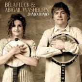 Banjo Banjo by Béla Fleck