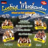 Lustige Musikanten Folge 2 von Various Artists