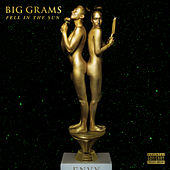 Fell In the Sun de Big Grams