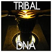 Tribal Dna by Various Artists