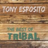 The Best of Tribal de Tony Esposito