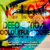 We Love Deep & Tribal Colourful House 2015 by Various Artists