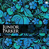It's A Pity by Junior Parker