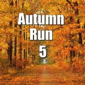 Autumn Run, Vol.5 von Various Artists
