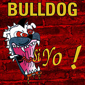 Si Yo! de Bulldog