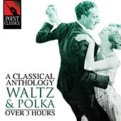A Classical Anthology: Waltz & Polka (Over 3 Hours) by Various Artists